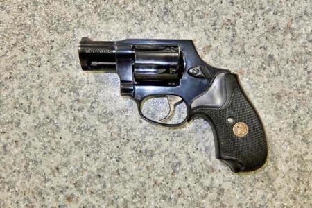 Taurus-85